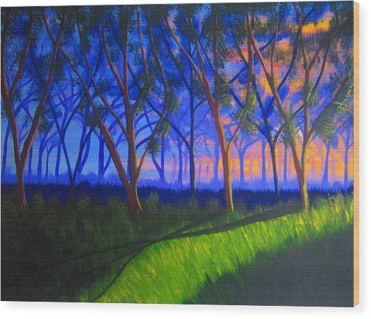 Forest At Sunset Wood Print by Haleema Nuredeen