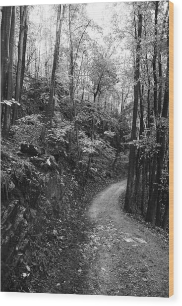 Forest Black And White 12 Wood Print by Falko Follert