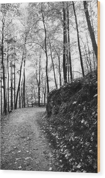 Forest Black And White 6 Wood Print by Falko Follert