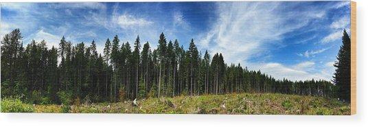 Forest Edge Wood Print by Jeff Klingler