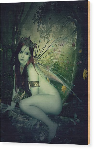 Forest Fairy Wood Print