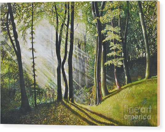 Forest Oil Painting Wood Print