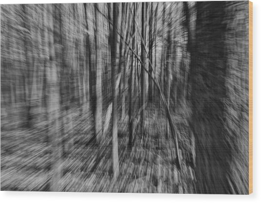 Forest Time B.w Wood Print