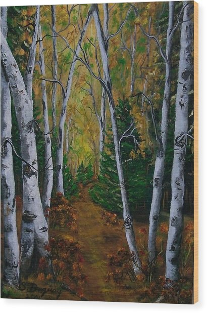 Birch Tree Forest Trail  Wood Print