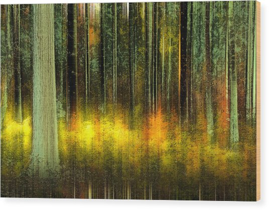 Forest V Wood Print