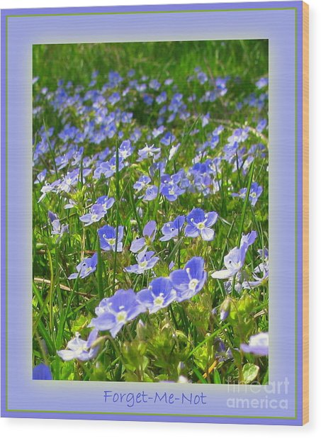 Forget Me Not Wood Print