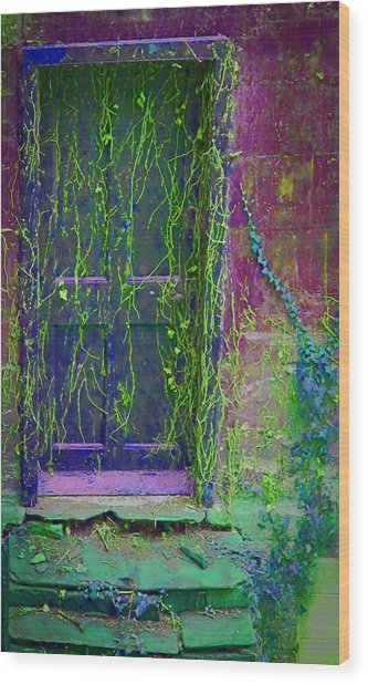Forgotten Doorway Wood Print
