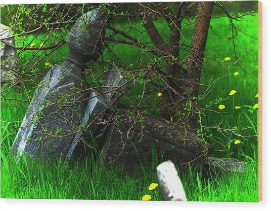 Forgotten Graves Wood Print by Valarie Davis