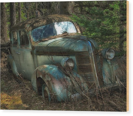 Wood Print featuring the photograph Forgotten In The Forest by Trever Miller