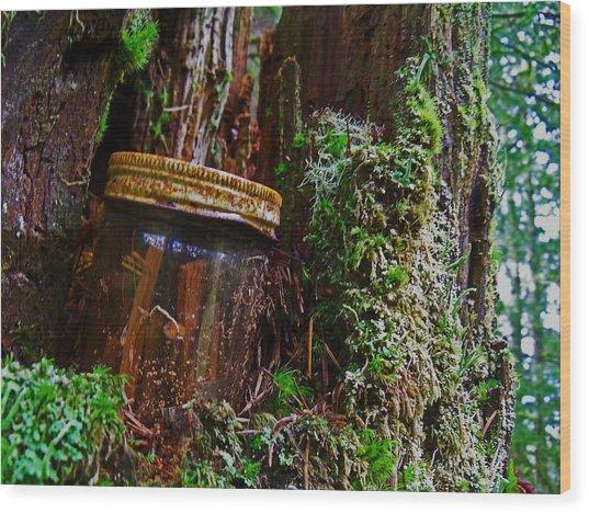 Forgotten Jar Wood Print