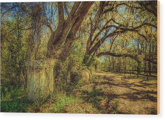 Forgotten Under The Oaks Wood Print