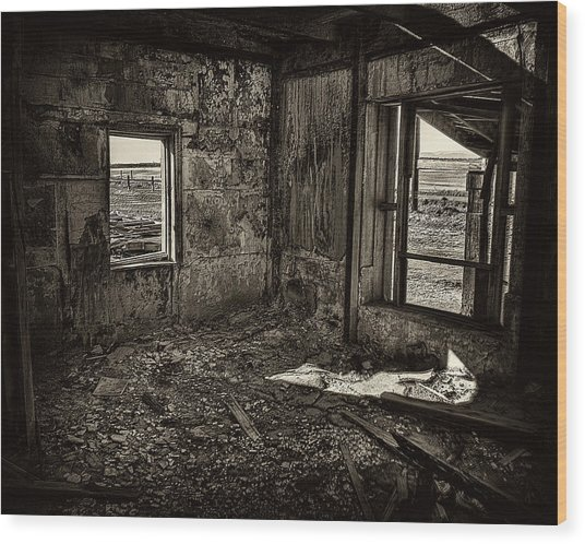 Forgotten Wood Print by Wayne Wood