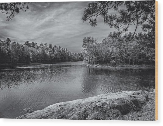 Fork In River Bw Wood Print