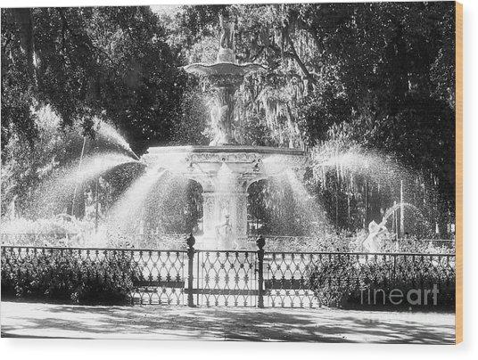Forsyth Park Fountain Wood Print
