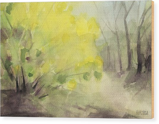 Forsythia In Central Park Watercolor Landscape Painting Wood Print