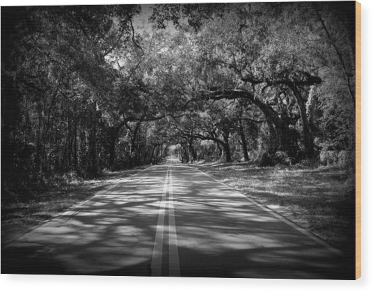 Fort Dade Ave Wood Print