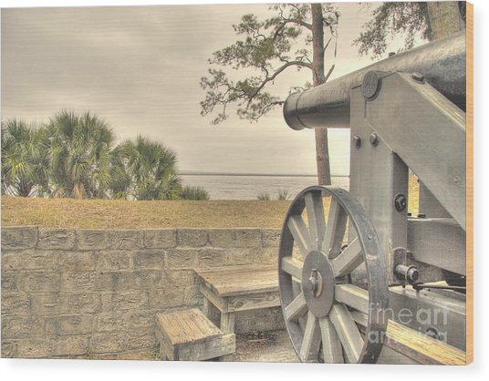 Fort Mcallister Cannon Wood Print