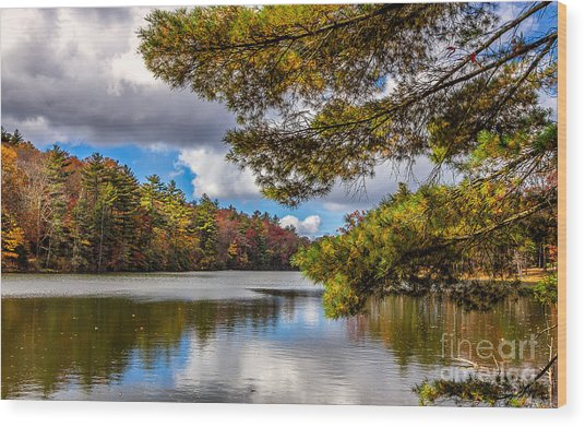 Fort Mountain State Park Wood Print