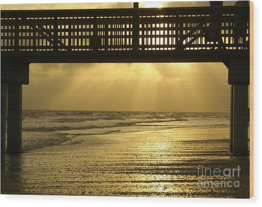 Fort Myers Golden Sunset Wood Print