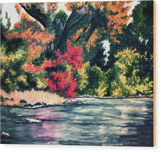 Fort Toulouse Tallapoosa River Flair Wood Print by Beth Parrish