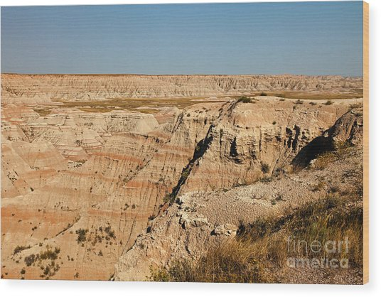 Fossil Exhibit Trail Badlands National Park Wood Print