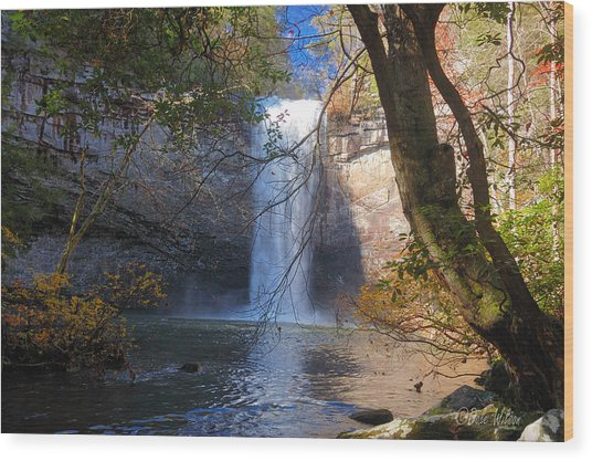 Foster Falls 1 Wood Print by Dale Wilson