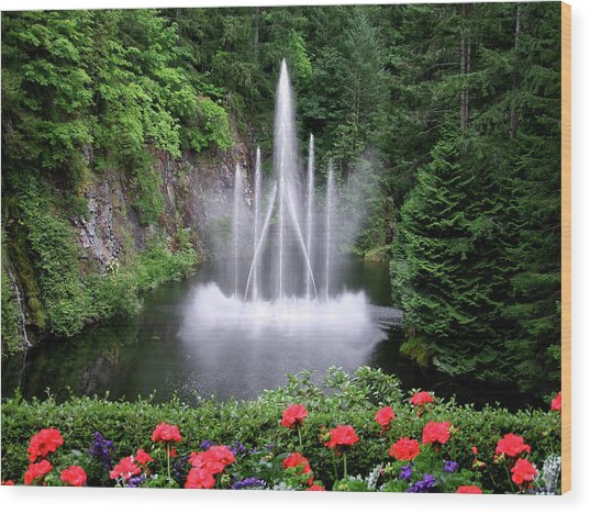 Fountain And Flowers Wood Print