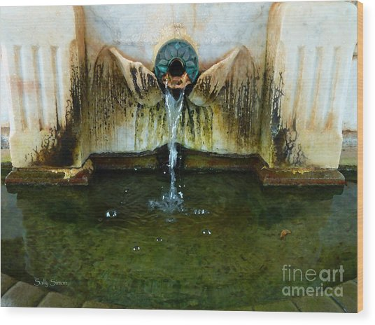 Fountain At Andersonville Wood Print