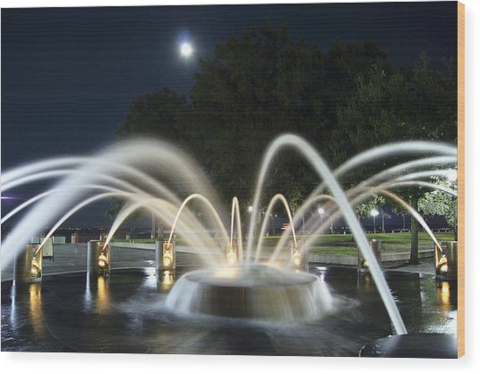 Fountain Charleston Waterfront Park Wood Print