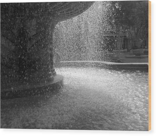 Fountain In Black And White Wood Print