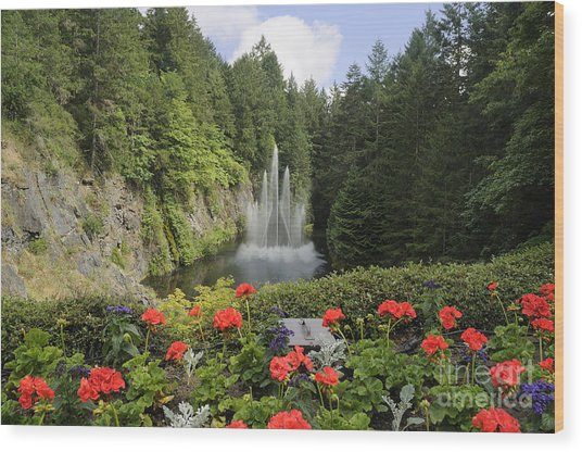 Fountain In Butchart Gardens Wood Print