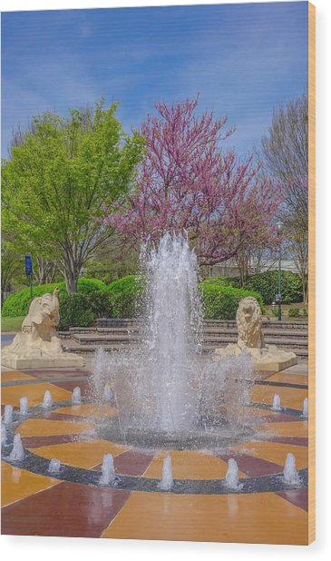 Fountain In Coolidge Park Wood Print