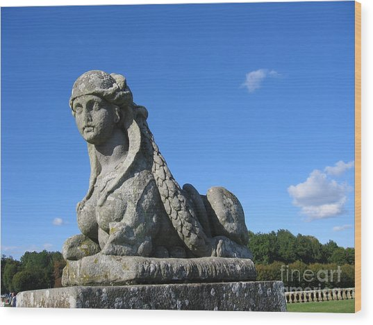 Fountainebleau Twin1 Wood Print