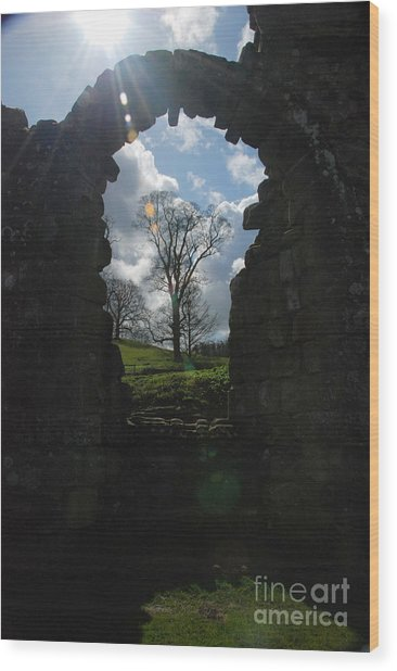 Fountains Abbey Wood Print
