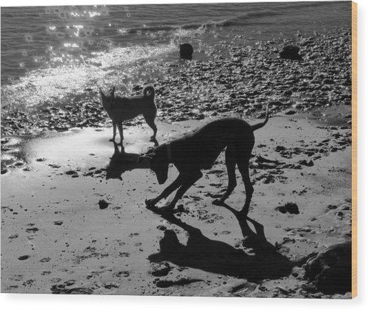Dog Magic Wood Print