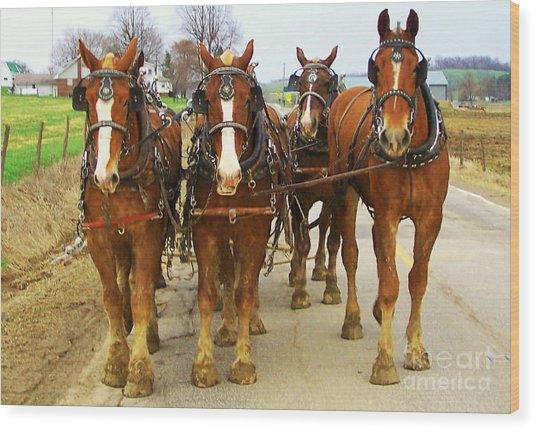 Four Horse Power Wood Print