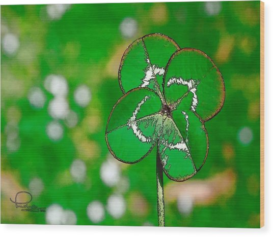 Four Leaf Clover Wood Print