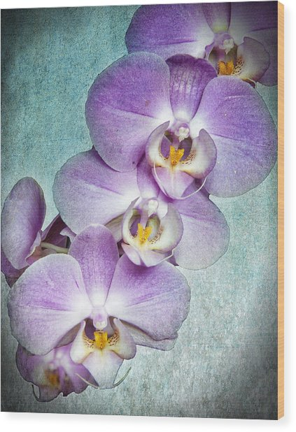 Four Little Orchids Wood Print