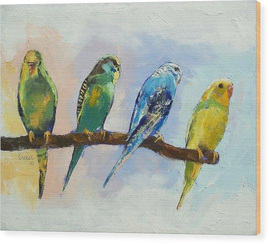 Four Parakeets Wood Print