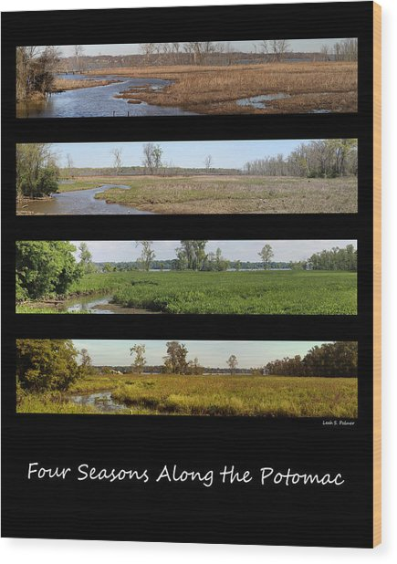 Four Seasons Along The Potomac Wood Print