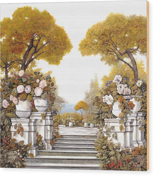 four seasons-autumn on lake Maggiore Wood Print