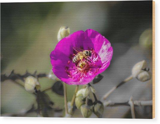 Fower And Bee Wood Print