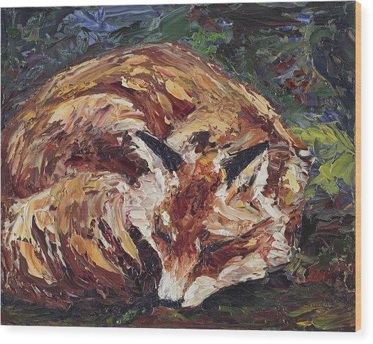 Fox Asleep Wood Print