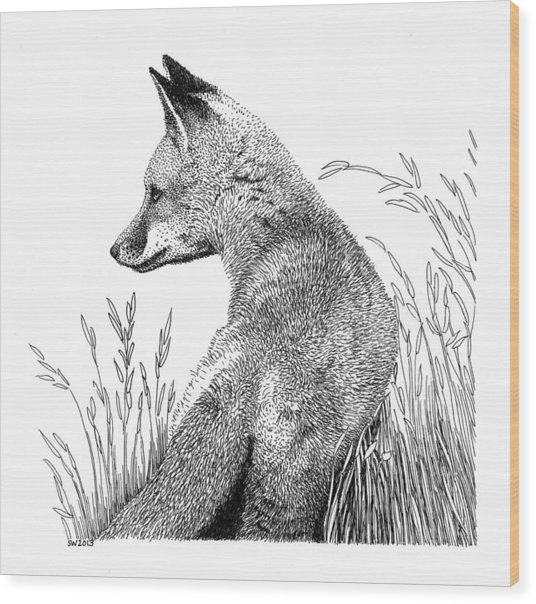 Fox In Grass Wood Print