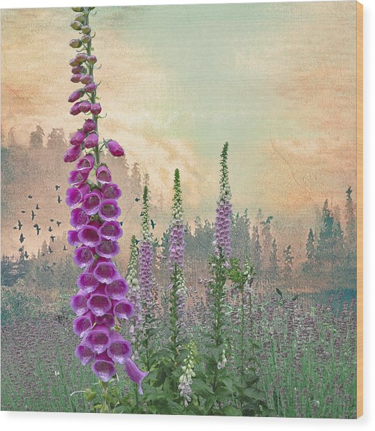 Foxglove In Washington State Wood Print