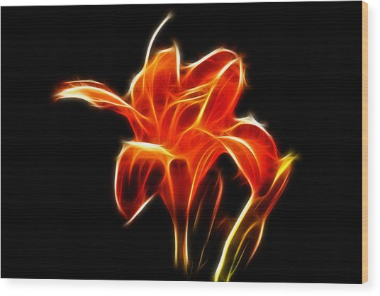Fractaled Lily Wood Print