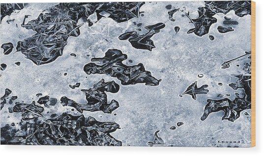 Fragile Patterns Wood Print by Kim Lessel