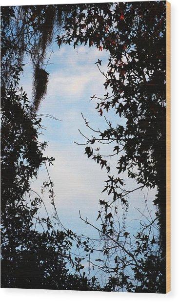 Frame Wood Print
