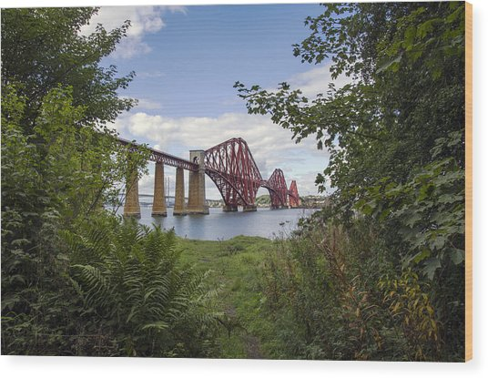 Framing The Forth Bridge Wood Print