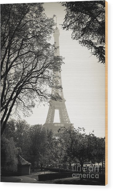 The Eiffel Tower Paris France Wood Print